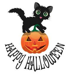 black cat and pumpkin for halloween2 vector image
