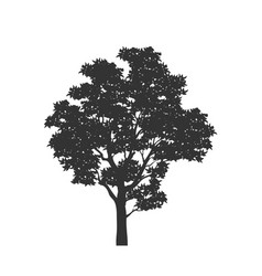 Black silhouette tree forest plant vector