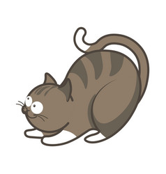 Cartoon playful kitten going to jump vector