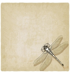 Dragonfly insect old background vector