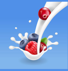 Forest mixed berries fruit in yogurt or milk vector