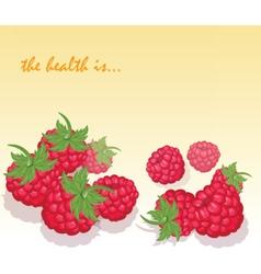 Fresh Healthy Red Raspberry vector