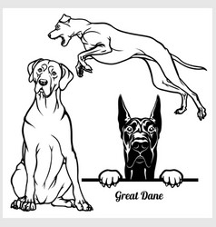Great dane - for t-shirt logo vector