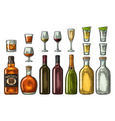 Set glass and bottle whiskey wine tequila vector