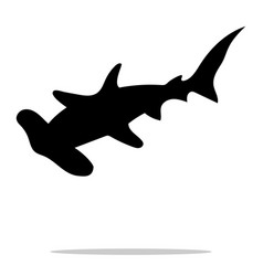shark hammerhead predator nautical black vector image
