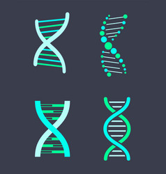 dna chain variations of bright turquoise color set vector image