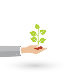 growth concept icon vector image