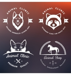 Set of Vintage Logos for Vet Clinic vector image