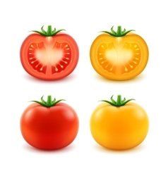 Set red yellow green fresh cut whole tomatoes vector