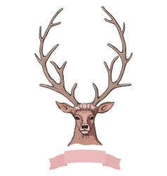 sketch beautiful deer with ribbon vector image