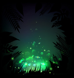 stock fireflies night tropical vector image