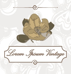 Vintage flower of apple vector