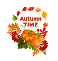 autumn harvest pumpkin and leaf poster design vector image vector image