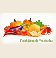 big set of colorful vegetables vector image vector image