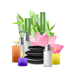 realistic detailed spa concept card poster vector image