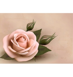 Retro background with beautiful pink rose with vector image