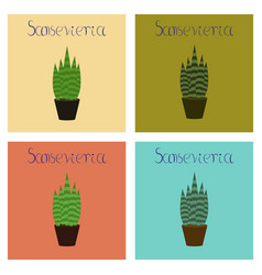 Assembly flat plant sansevieria vector