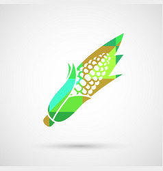 corn isolated vector image