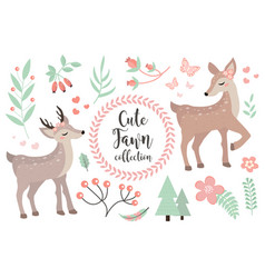 Cute fawn character set objects collection of vector