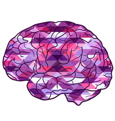 human brain with a polygonal background vector image