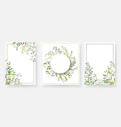 invitation cards with floral and branches wreath vector image