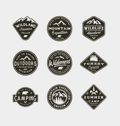set of vintage wilderness logos hand drawn retro vector image