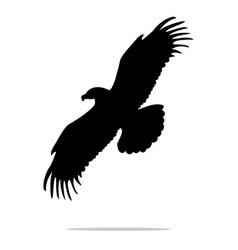 eagle bird black silhouette animal vector image