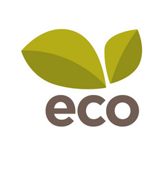eco logo design with green leaves isolated vector image