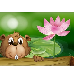 A beaver beside a pink flower vector