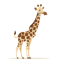 cartoon style of giraffe vector image