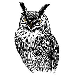 Owl hand drawn black and white isolated vector