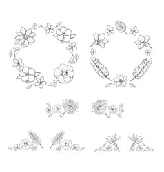 sketch monochrome floral exotic plants collection vector image