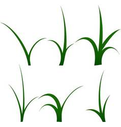 Stalk of grass set vector