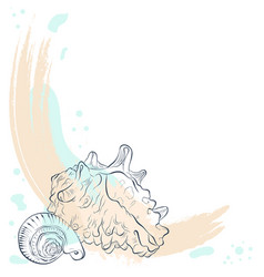 Two seashells on a grunge background vector