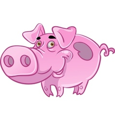 Funny pink pig vector image