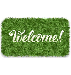 Welcome mat vector image vector image