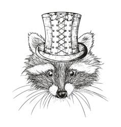 hand drawn raccoon vector image vector image