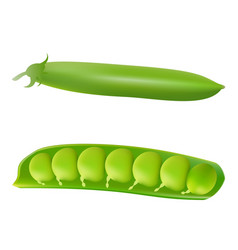set of shelled fresh green peas isolated on a vector image