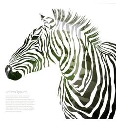 Animal of military zebra vector image