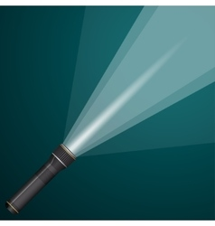 Beam light from a flashlight black and metal vector