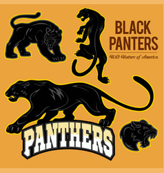Black panthers - set isoled vector