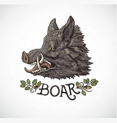 Boar head vector