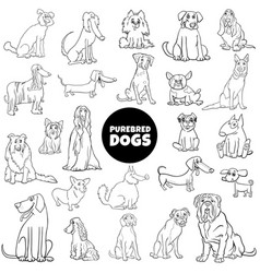 cartoon purebred dogs large set color book page vector image