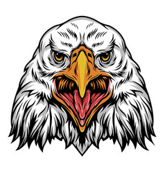 Colorful angry eagle head template vector