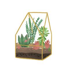 geometric florarium with composition succulents vector image