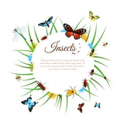 Insects Background vector image