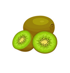 kiwi fruit whole and half vector image