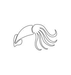 one single line drawing beauty squid vector image