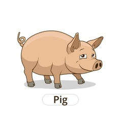 Pig animal cartoon for children vector