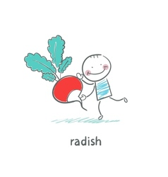 Radishes and people vector image